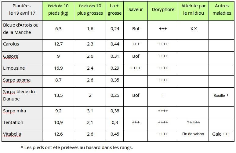 Banc d 39 essai 9 vari t s de pommes de terre dites r sistantes au mildiou le jardin vivant - Tableau pomme de terre varietes ...