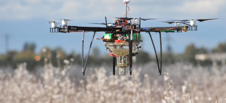 Pourquoi les drones ne remplaceront jamais les abeilles ?